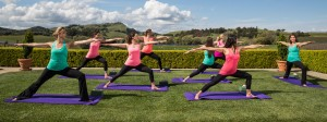 Wellness in Wine Country