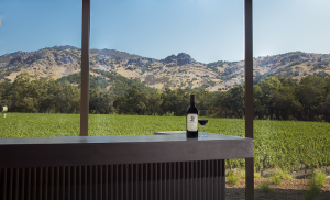 A New View for Stag's Leap Wine Cellars