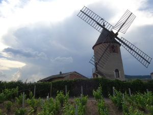 There's More to Beaujolais than Beaujolais Nouveau (Part Deux)