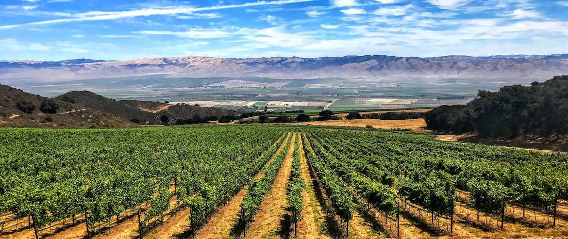 Santa Lucia Highlands: Wind and Wine